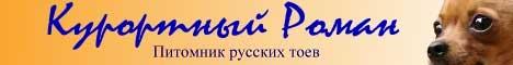 Русские той-терьеры - красивые фото, вязанная одежда для маленьких собачек